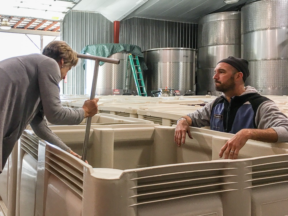 Christine Stimac, Three Feathers Estate owner, presses the first harvest grapes in fermentation tanks in the company of winemaker Dan Duryee of Lady Hill Winery, Saint Paul, Oregon, USA.