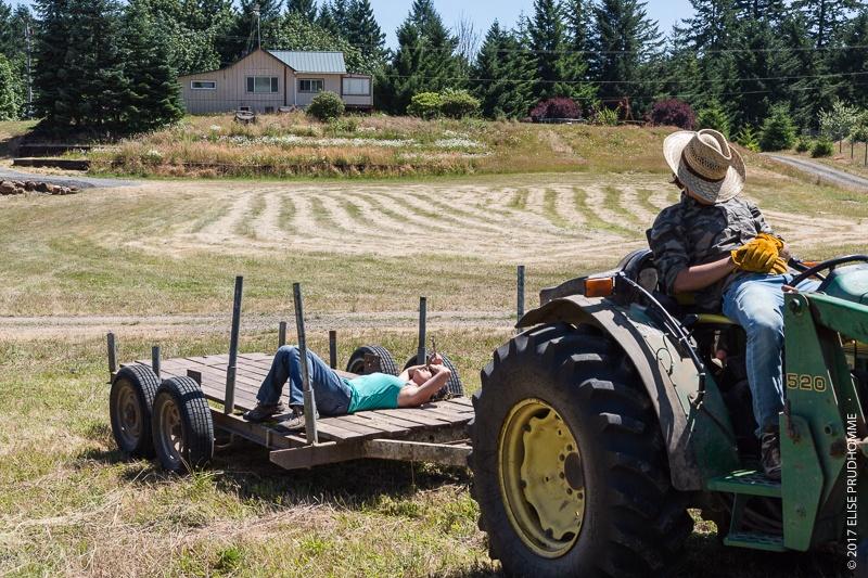 Three Feathers Estate & Vineyard haymaking team taking a quick break in between bucking bales.