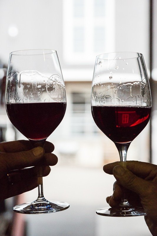 Before and After Filtration.  Two comparison glasses of Three Feathers 2016 vintage Pinot Noir; filtered (right) and unfiltered (left).