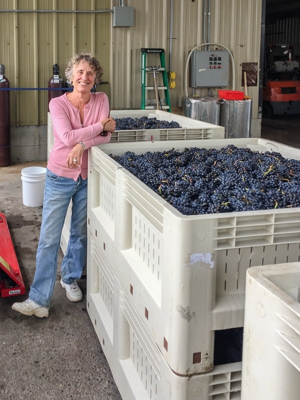 Christine Stimac with 2018 harvested grapes from Three Feathers Estate & Vineyard, Willamette Valley AVA, Chehalem Mountain, Oregon.