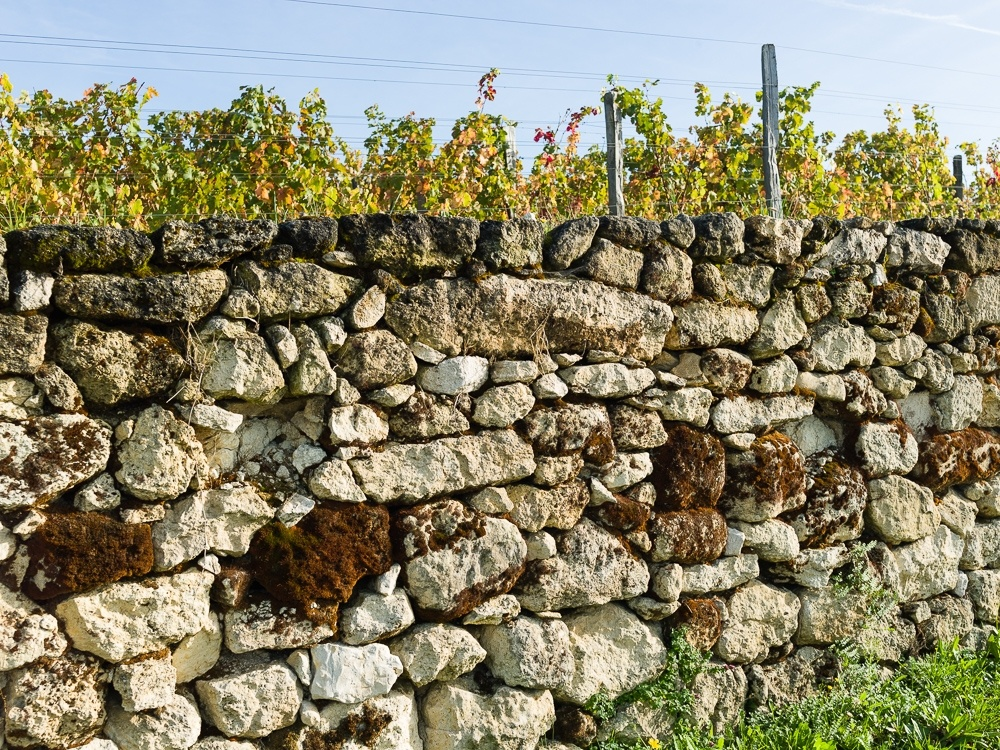 A clay-limestone bordering wall in the vineyards of Wine Estate