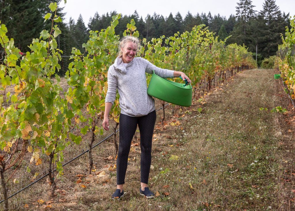 Friends gathered at Torio Vineyard to harvest the Pinot Noir Pre