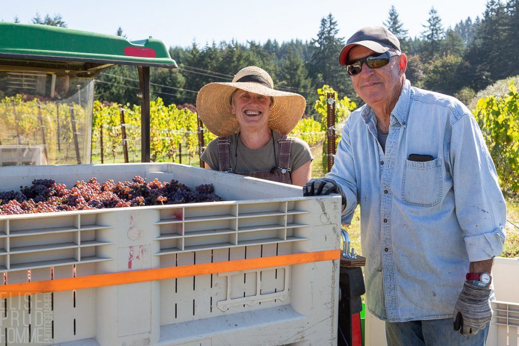 Christine and Victor harvesting Block 3 of our for the first tim