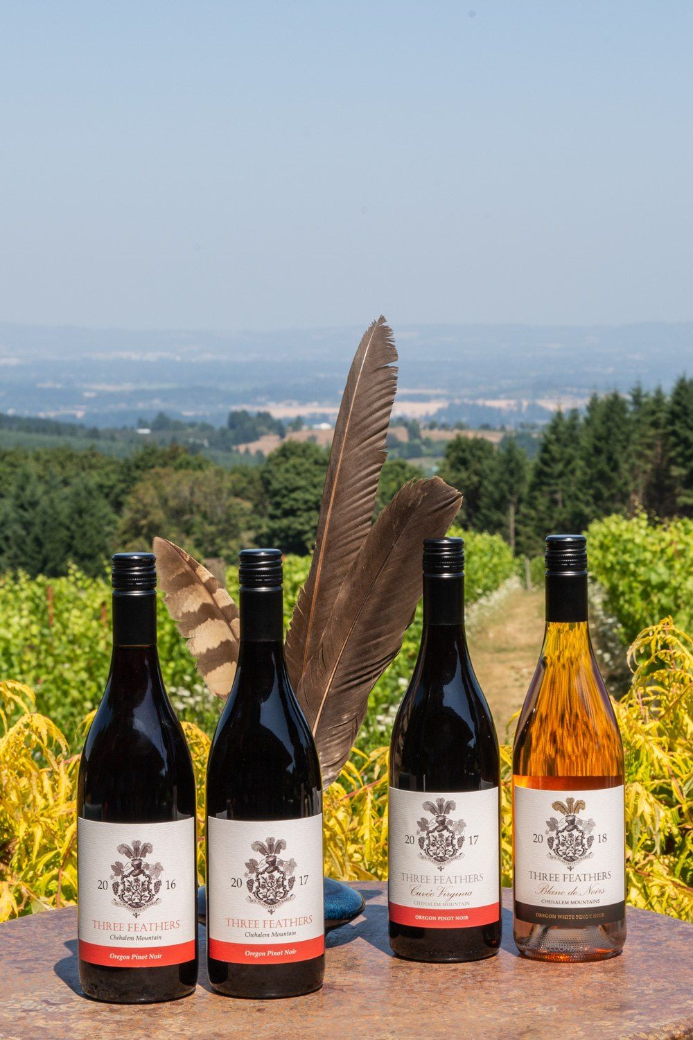 Three Feathers mixed wine selection vintages 2016, 2017 and 2018.
